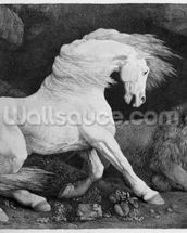 A Horse Affrighted by a Lion, engraved by the artist, 1788 (etching) wall mural thumbnail