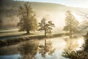 Chatsworth Misty River wall mural thumbnail